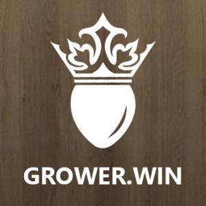 Купить семена конопли grower.win